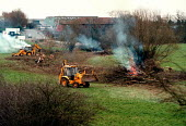 Contractors ripping out and burning hedgerow and trees from a stream and meadow to make way for construction of a road and industrial development. 150,000 miles of hedgerow, essential to native birds,... - John Harris - 1990s,1999,animal,animals,belt,bird,birds,bonfire,bonfires,brook,building,BUILDINGS,BURN,burning,BURNS,Construction Industry,country,countryside,DESTROYED,destruction,developer,developers,development,