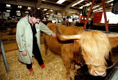 Veterinary Inspector checking cattle at the Royal Agricultural Show Stonleigh Warwickshire - John Harris - 07-08-1999