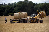 Landworker loading hay bales, using a JCB telescopic handler, tractor and trailer, Warwickshire - John Harris - 2010,2010s,agricultural,agriculture,bale,bales,capitalism,capitalist,EARNINGS,EBF,Economic,Economy,employee,employees,Employment,EQUALITY,farm,Farm Worker,farm workers,farmed,farmer,farmers,farmhand,f