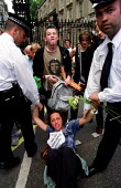Protesters arrested at die in 10 Downing Street. Protest against 10 years of economic sanctions against Iraq. - Jess Hurd - 07-08-2000