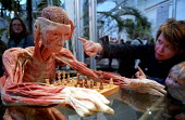 The Chess Player with mother and small child. Whole Plastination with dissection of the central and peripheral nervous systems. Donated human plastinated body at Gunther Von Hagens controversial Body... - Jess Hurd - 2000s,2002,ACE,ACE arts culture,Anatomical,anatomy,art,arts,BIOLOGICAL,biological tissues,biology,bodies,body,cities,city,cord,culture,DEHYDRATED,dehydration,dissected,EDU education,epoxy,exhibition,F