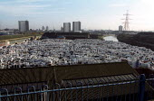 Piles of unwanted fridges litter the urban environment. EC regulations force Local Authorities to comply with new laws on the disposal of domestic fridges which contain foam with Ozone Depleting Subst... - Jess Hurd - 16-01-2003