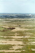 People walk across the barren, shingle landscape of Dungeness, Romney Marsh, Kent. - Jess Hurd - 06-04-2003