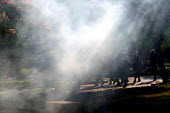 Riot police fire teargas and attack protesters during clashes inside the Red Zone security cordon surrounding the European Union Summit in Halkidiki, Greece. - Jess Hurd - 20-06-2003