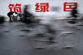 People cycle to work on bicycles. Shanghai, China. - Jess Hurd - 20-10-2003