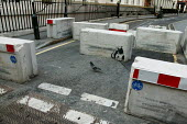 Concrete security barriers adorned with Banksy graffiti. City of London - Jess Hurd - 2000s,2004,ace arts culture,activist,activists,adult,adults,against,anti,art,artist,ARTISTS,attack,attacking,Banksy,barriers,block,blocked,blocks,CAMPAIGN,campaigner,campaigners,CAMPAIGNING,CAMPAIGNS,
