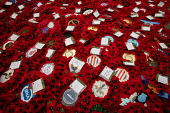 Wreaths of Remembrance laid at the Cenotaph for Remembrance Sunday. Whitehall, London. - Jess Hurd - 2000s,2004,badge,badges,dead,death,deaths,died,emblem,emblems,ex-servicemen,insignia,memorial,memorials,mortality,poppies,poppy,red,Remembrance,Remembrance Day,servicemen,ucw war,UK,war,wreath,wreaths