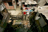 Woman looks out on an open sewer running though her back yard. Heliopolis Favela on the outskirts of Sao Paulo where families live in slum housing, Brazil. - Jess Hurd - 08-02-2005
