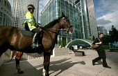 Mounted police at Canary Wharf. Horses are deployed under conditions of heightened security to deter bombers from entering the tube station. Docklands, East London. - Jess Hurd - 2000s,2005,adult,adults,American,americans,animal,animals,bank,banking,banks,beat,blocks,Canary Wharf,capitalism,capitalist,Citi,Citibank,cities,citigroup,city,citygroup,CLJ,CLJ law and justice,commut