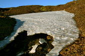 Melting glacial ice, Snaefell Mountain. Iceland. - Jess Hurd - 23-07-2006