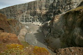 Views of Hafrahvammagljufur canyon where environmental impact from the Construction of Europes largest dam project at Karahnjukar is expected. Icelands hydroelectric potentialis being expoited by mult... - Jess Hurd - 25-07-2006