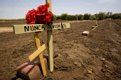 Holtville Cemetery where immigrants who die in the desert trying to cross the US and Mexican border illegally are buried. Most graves are without a name and marked John Doe or Jane Doe with a brick. T... - Jess Hurd - 05-07-2008