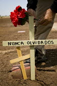 Enrique Morones, Border Angels laying flowers at Holtville Cemetery mass grave where immigrants are buried who died trying to cross the US border illegally. Most graves are without a name and marked J... - Jess Hurd - 05-07-2008