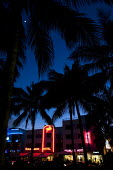 Boulevard Hotel and Starlite hotel, Ocean Drive Miami South Beach, Florida. USA - Jess Hurd - 11-06-2008