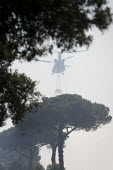 Army Chinook helicopter is mobilised to fight a pine forest fire near Ostia, South West Rome, Italy - Jess Hurd - 25-07-2008