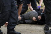 Police body wrap a protester who refuses to be searched leaving the camp. Climate Camp against climate change and the bulding of Kingsnorth coal fired power station. Rochester, Kent. - Jess Hurd - 08-08-2008