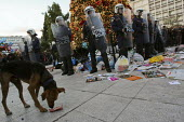 Riot police protect a Christmas tree from demonstrators throwing rubbish and pork bones. Demonstration called after the fatal shooting by the police on Dec. 6 of a 15-year-old, Alexandros Grigorolopou... - Jess Hurd - 2000s,2008,activist,activists,adult,adults,against,Alexandros,animal,animals,anti,Anti Capitalist,CAMPAIGN,campaigner,campaigners,CAMPAIGNING,CAMPAIGNS,canine,capitalism,capitalist,Christmas,CLJ,confl