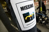 Missing Panamanian Golden Frog poster, City of London lamp post. The Panamanian golden frog (Atelopus zeteki) is an endangered toad which is endemic to Panama - Jess Hurd - 21-01-2009