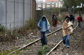 Young refugees in Calais made homeless after the clearing of the Jungle walk down railway tracks to get food provided by a charity. France. - Jess Hurd - 16-10-2009