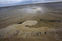 Suspected Corexit foam washing up on Biloxi beach. BP oil spill. , Mississippi. USA. - Jess Hurd - 17-08-2010