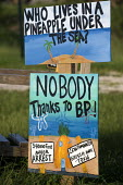 Protest signs using Spongebob Squarepants cartoon characters after the BP oil spill. Grand Isle, Louisiana. USA. - Jess Hurd - 21-08-2010