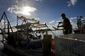 Unloading seafood farmed from a lagoon unaffected by the BP oil spill. Louisiana. USA. - Jess Hurd - 21-08-2010