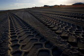 Tracks left by earthmoving equipment on the beach. BP oil spill dispersed on Grand Isle beach, Louisiana. USA. - Jess Hurd - 20-08-2010