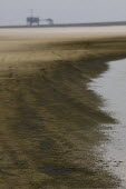 BP Gulf Oil disaster. Dauphin Island beach oil slick, Alabama. USA. - Jess Hurd - 17-08-2010