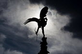 Statue of The Angel of Christian Charity in Piccadilly Circus London by Alfred Gilbert. Generally believed to depict Eros it is an image of his twin brother, Anteros, the God of Selfless Love. Known a... - Jess Hurd - 2010,2010s,ACE,art,arts,artwork,artworks,Belief,charitable,Charity,CHILD,child labor,child labour,CHILDHOOD,children,christian,christianity,cities,city,conviction,culture,Eros,faith,figure,figures,giv
