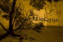 Graffiti Vive La Revolution, Al-Tahrir (Liberation Square), Cairo, Egypt - Jess Hurd - 01-02-2011