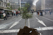 A sapling tree in the road. Confrontations between police and protesters outside the Greek parliament during a general strike against austerity cuts. Syntagma Square, Athens, Greece. - Jess Hurd - 15-06-2011