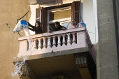 Women pouring water from a balcony. Uprising against the military junta. Al-Tahrir (Liberation Square), Cairo, Egypt - Jess Hurd - 23-11-2011