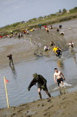 Maldon Mud Race, Essex. Competitors compete to be the first to complete a 400 metre dash over the bed of the River Blackwater. The race is organised by the Lions & Rotary clubs of Maldon and raises mo... - Jess Hurd - 05-05-2013