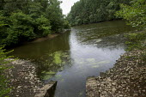 South East Water Ardingly Reservoir, Balcombe, West Sussex. - Jess Hurd - 31-07-2013