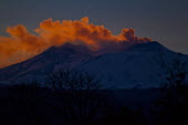 Mount Etna at sunset, Sicilly, Italy. - Jess Hurd - 16-01-2014