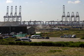 London Gateway, a new DP World deep water port development on the north bank of the River Thames in Thurrock, Essex, it will handle the worlds largest container ships and be one of Europe largest logi... - Jess Hurd - 16-07-2014