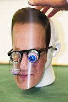 David Cameron mask. UKIP Annual Conference, Doncaster. - Jess Hurd - 26-09-2014