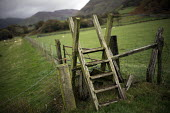 A wooden Ladder stile over a fence on a public footpath nr Bird Rock, Craig yr Aderyn. Tywyn, Dysynni Valley. Snowdonia National Park. Wales. - Jess Hurd - 25-10-2014