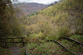Nant Gwernol Forest and Bryn Eglwys abandoned slate Quarry, Abergynolwyn. Snowdonia National Park. Wales. - Jess Hurd - &,2010s,2014,abandoned,Broadleaf Tree,country,countryside,derelict,DERELICTION,disused,hill,hills,Leisure,LFL,LIFE,Lifestyle,mine,MINES,Mountain Range,mountainous,mountains,outdoors,outside,PEOPLE,Qua
