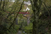 The Talyllyn Railway. Steam engine, narrow gauge railway, Dolgoch Falls. Snowdonia National Park. Wales. - Jess Hurd - 26-10-2014