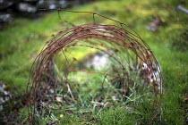 Wire, Bird Rock, Craig yr Aderyn. Tywyn, Dysynni Valley. Snowdonia National Park. Wales. - Jess Hurd - 25-10-2014