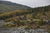 Nant Gwernol Forest and Bryn Eglwys abandoned slate Quarry, Abergynolwyn. Snowdonia National Park. Wales. - Jess Hurd - &,2010s,2014,abandoned,agricultural,agriculture,capitalism,capitalist,conifer,conifers,country,countryside,derelict,DERELICTION,disused,EBF,Economic,Economy,eni,environment,Environmental Issues,estate