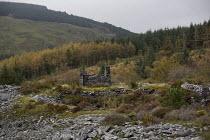 Nant Gwernol Forest and Bryn Eglwys abandoned slate Quarry, Abergynolwyn. Snowdonia National Park. Wales. - Jess Hurd - 28-10-2014