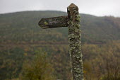 Old narrow railway station sign. Nant Gwernol Forest and Bryn Eglwys abandoned slate Quarry, Abergynolwyn. Snowdonia National Park. Wales. - Jess Hurd - 28-10-2014