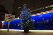 New Scotland Yard, police Christmas tree. Westminster. London. - Jess Hurd - 2010s,2014,ACE,adult,adults,at,Christmas,cities,city,CLJ,conifer,conifers,culture,cuts,decorations,festival,festivals,festive,FESTIVES,Headquarters,holiday,holidays,HQ,law,Leisure,LFL,LIFE,MATURE,metr