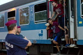 Refugees from the Beremend, Hungarian border crossing are put on trains at Magyarboly, to an unknown location. Hungary. - Jess Hurd - 2010s,2015,adult,adults,Afghan,afghans,Asylum Seeker,Asylum Seeker,BAME,BAMEs,BME,bmes,border,border borders,border control,border controls,borders,boy boys,carriage carriages,child children,CLJ,crisi