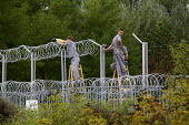 Prisoners erect barbed wire border fences, Hungarian border crossing. Hungary. - Jess Hurd - 20-09-2015