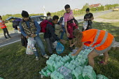 Volunteers from Germany give exhausted refugees food and water for the journey to Opatovac refugee camp. Croatia. - Jess Hurd - 22-09-2015