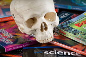 A human skull and numerous science textbooks, in a science lesson at a secondary school. - Paul Carter - 10-07-2007