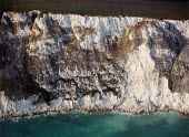 Details of cliffs on the west side of The Isle of Wight, at Tennyson Down. - Paul Carter - 07-10-1996